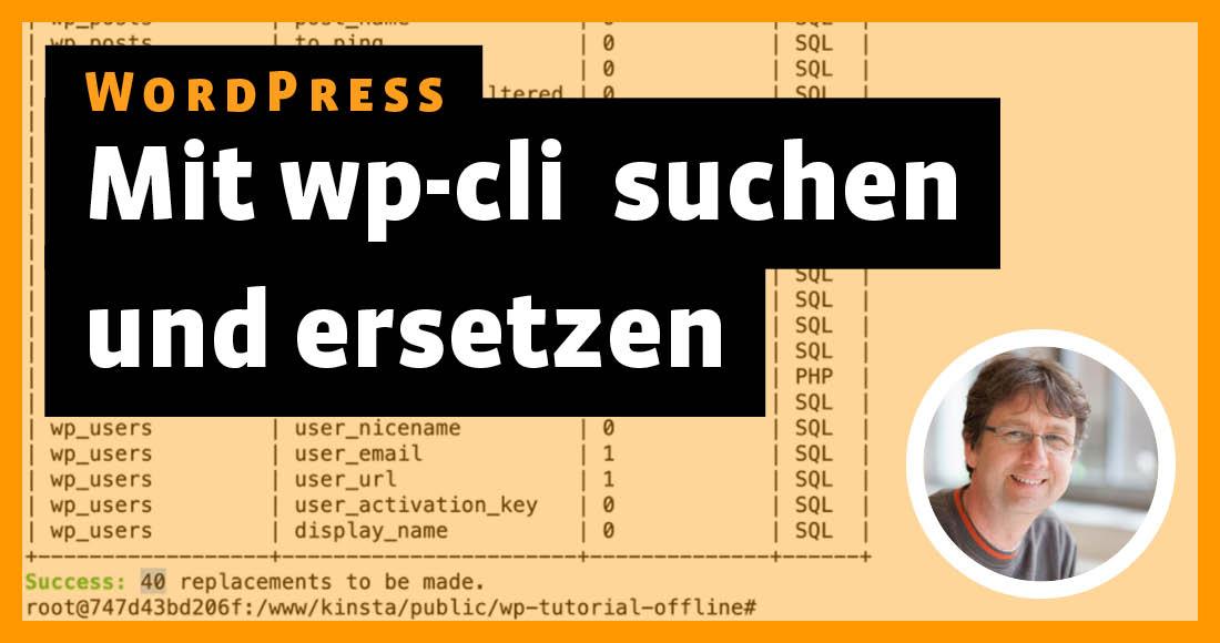 2102-wp-wp-cli-suchen-ersetzen4