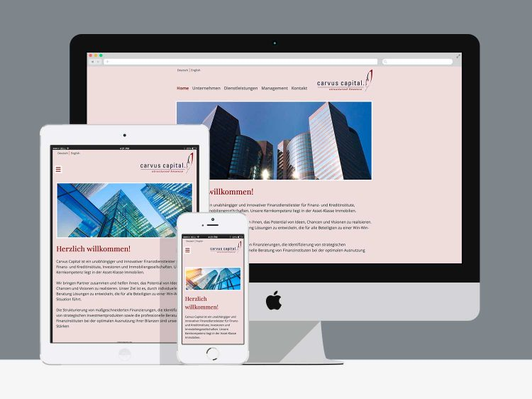 WordPress-Theme für cavus-capital.com