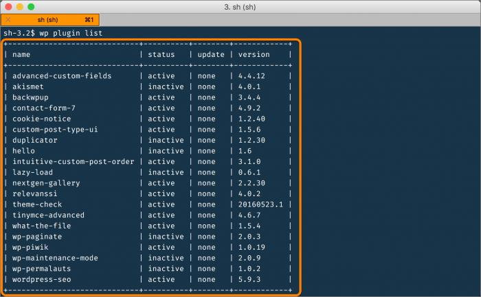 wp-cli gibt eine Tabelle zu Plugins aus